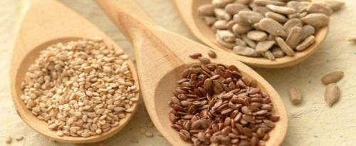 Como-utilizar-as-sementes-de-linhaça