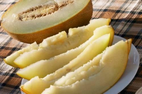 Dieta-do-melão