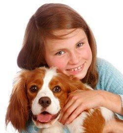 Quando o seu filho quer um cão