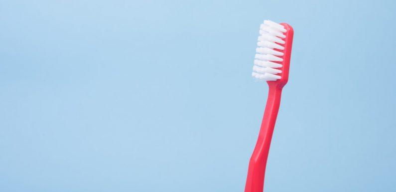 A Erupção Dentária