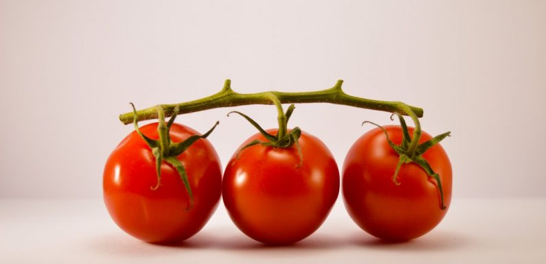 A Dieta do Tomate